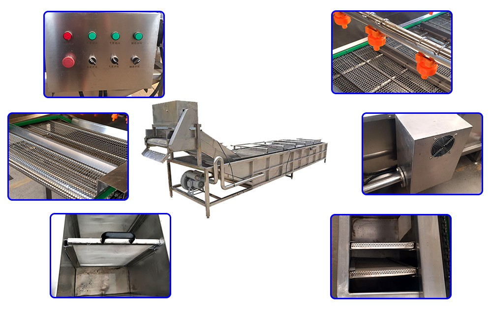 industrial vegetable washing machine design