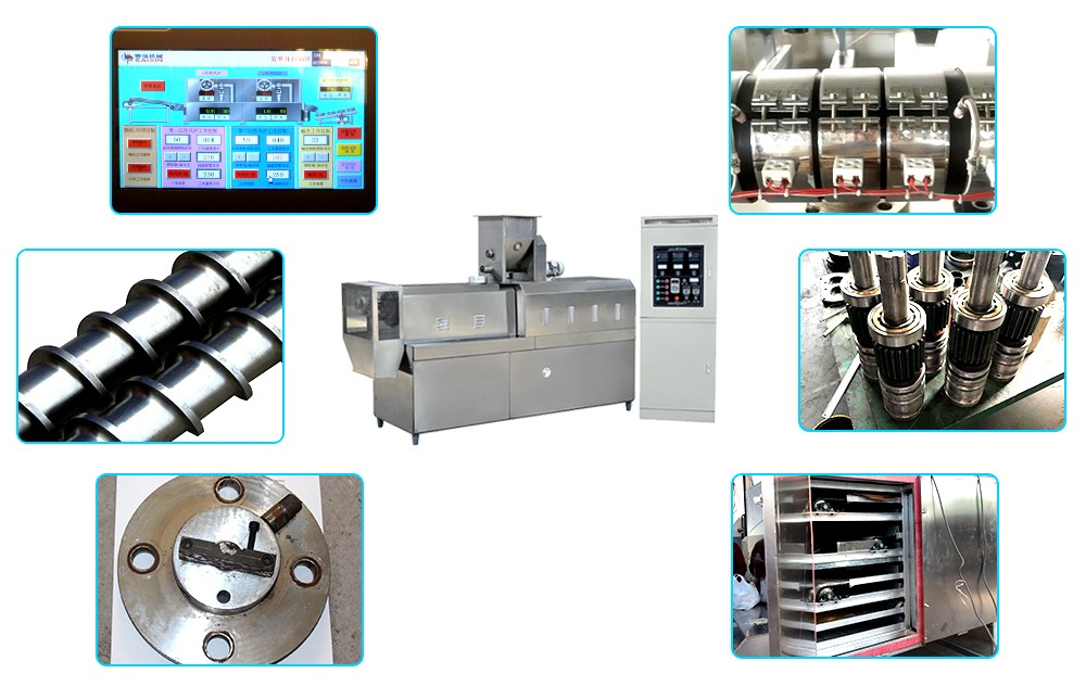 fish feed extruder machine process